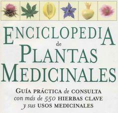 Desde Salud de la botica del señor, que compartimos en el post: Curar con plantas,