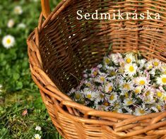 Edible Flowers, Korn, Wicker Baskets, Life Is Good, Style, Swag, Life Is Beautiful, Woven Baskets