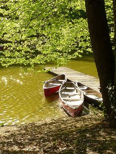summertime...  I would love to be in that canoe with a picnic and a book floating down the river