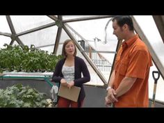 ▶ Aquaponics in a Growing Dome - YouTube