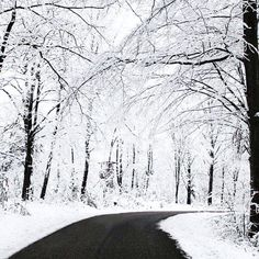 All I want is a Winter Wonderland. :)