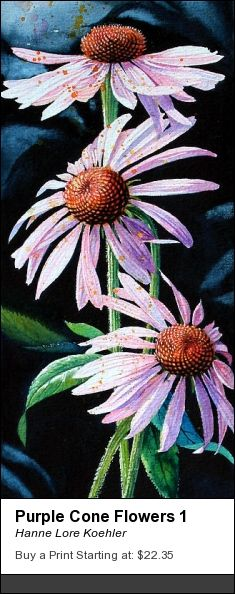 Purple Cone Flower Painting and Art Prints