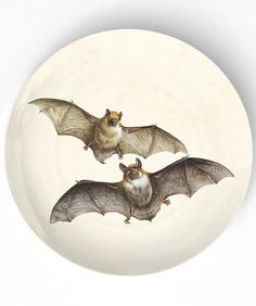 bats  II - 10 inch Melamine Plate with softly aged off-white background, halloween plate