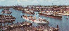 Rotterdamse havens