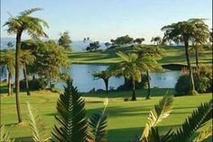 Leopard Rock hotel and golf course, Vumba, Zimbabwe... my dad spends too much time here:p