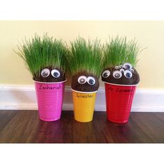 DIY Chia Pets...Fill pantyhose with grass seed, then soil. So easy! Kids love to give them haircuts!