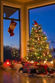 Photo of a brightly lit Christmas tree and stocking in a window of a home in Canada.