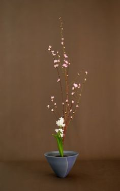 Style Shoka Shofutai - Art Floral Japonais Ikebana Thai Mai Van