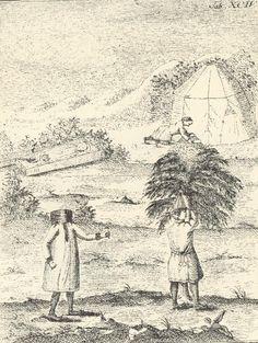 bilde 2