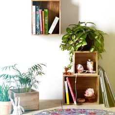 The different plants and random simple storage make it so versatile and inviting | Urban Ourfitters