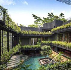 Cornwall garden  (Chang Architects) #architectureoskar