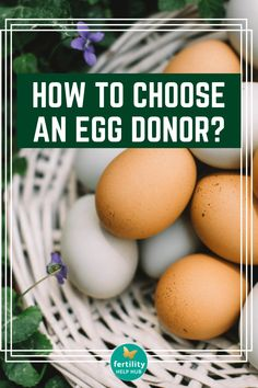 Head over to Fertility Help Hub, to find how to choose an egg donor. #fertility #infertility #egg #donor #sperm #donation #natural #healthy #ttc #ttcjourney Conception Tips, Fertility Help, Egg Donation, Surrogacy, Eggs, Healthy, Egg, Health, Egg As Food