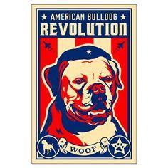 american bulldogs on Pinterest | Bulldogs, Bullies and ...