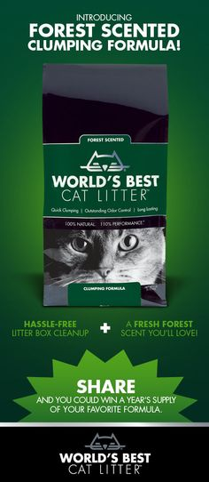The newest member of the World's Best Cat Litter family. We now have a choice for everyone - and every cat.