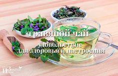 Травяной чай — удовольствие для здоровья и настроения Parsley, Food And Drink, Herbs, Drinks, Plants, Beverages, Plant, Drink, Herb