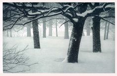 etching gallery - Terry Steinke Original Etchings
