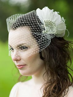 Birdcage veil inspiration