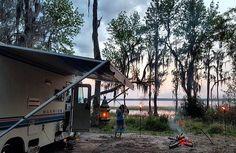 "RV Gems on Instagram: ""Enjoyable #camplife in Osceola National #forest #florida by @nomad.by.nature. #rvlife #rvgems #homeiswhereyouparkit #rvliving #wanderlust #camp #fulltimerv #camplife #camping #travel #outdoors #nature #travelusa #wandering #offthegrid #campvibes #nomad #boondocking #roadtrip #traveltrailer #gorving"""