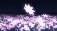 gif Lucky Star anime scenery so beautiful. Aesthetic Painting, Aesthetic Drawing, Flower Aesthetic, Aesthetic Images, Aesthetic Anime, Aesthetic Wallpapers, White Aesthetic, Flowers Gif, Dark Flowers