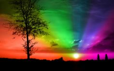 Good Morning Starshine, Oliver, From the musical Hair. Inspiration for my board Good Morning Starshine about the sun. Sound Of Music, Good Music, My Music, Musical Hair, Vídeos Youtube, Humor Grafico, Types Of Music, Over The Rainbow, Rainbow Colors