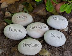 Natural Garden Markers Plant marker herb marker or by sjengraving, $60.00
