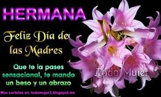 Happy Birthday Wishes Cards, Happy Birthday Mom, Birthday Greetings, Spanish Mothers Day, Happy Mothers Day, Good Morning In Spanish, Mather Day, Happy Anniversary Quotes, Mothers Day Images