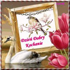 Dla każdego: DZIEŃ DOBRY Ha Ha, Home Decor, Facebook, Sport, Pictures, Fotografia, Love And Lust, Funny Stuff, Decoration Home