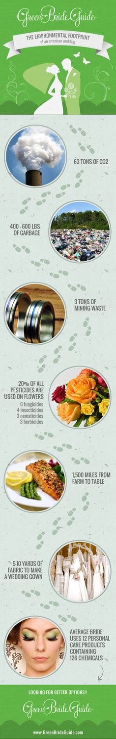 New infogram on the environmental impact of an american wedding