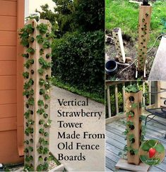 Just use four pieces of cedar boards and drill holes on each side of them, then you can get a simple vertical strawberry planter Old Fence Boards, Cedar Boards, Strawberry Tower, Strawberry Planters, Hanging File Organizer, Home And Garden Store, Vertical Planter, Old Fences, Landscape Fabric
