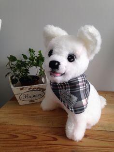 little Anthony's dog