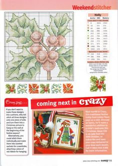 Gallery.ru / Photo # 31 - Cross Stitch Crazy 105 Christmas 2007 - tymannost