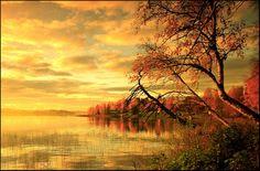 Fall.. V by closer-to-heaven.deviantart.com on @deviantART