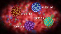 hpv vírus lecenje