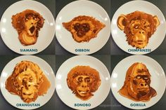 Pancakes of The Apes: Eat Primates For Breakfast (Cruelty Free)