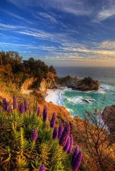 McWay Falls in Julia Pfieffer State Park , Big Sur California. *