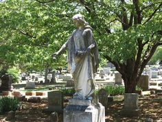 """Southern Heirlooms """"Our Southern History: Maple Hill Cemetery"""""""