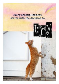 TRY by PicturezandParablez on Etsy Encouragement, Sparkle, Inspire, Wall Art, Motivation, Cats, Animals, Inspiration, Gatos
