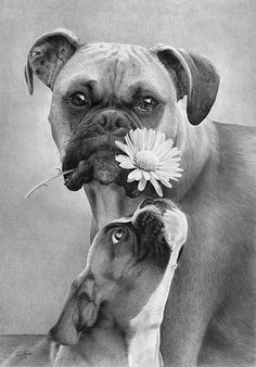 Flowery Expression by Tim Jensen