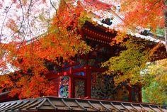 秋のお寺-760x509
