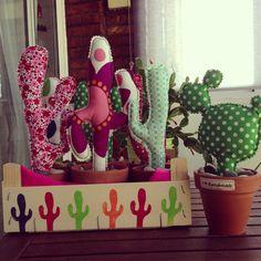 Más cactus!