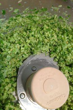 Do you like garlic? Do you like Pesto? Then you will flip for this Garlic Scape Pesto Recipe!!