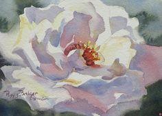 White Rose by Poppy Balser Watercolor ~ 5 x 7