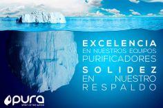 FRANQUICIA GUTTA. Iceberg
