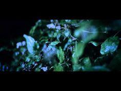 Martin Kohlstedt - EXA (Official Video) - YouTube