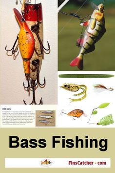 I did some research and found the top 5 largemouth bass fishing lures. These are the lures that most bass fishermen have in their tackle boxes and the ones that they use to catch fish. Any of these would make great gifts for a largemouth bass angler on yo Bass Fishing Lures, Trout Fishing, Fishing Tackle, Fly Fishing, Fishing Trips, Fishing 101, Women Fishing, Fishing Stuff, Fishing Quotes