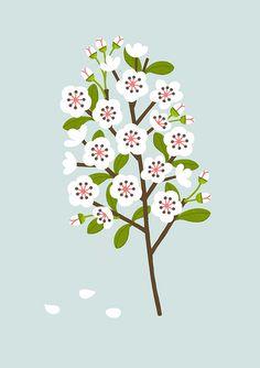 Blossom - Sarah Abbott