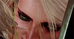 Geralt and Ciri. The Wolf and the Swallow