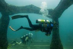 マイアミにある海中墓地「ネプチューン・メモリアル・リーフ」まるで海底遺跡! | RETRIP