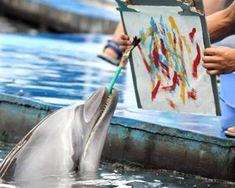 11 Artistic Animals That Express Themselves Through Art