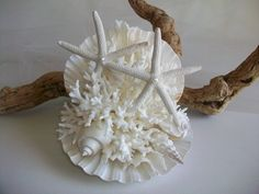 Large Beach Theme Wedding Shell Coral Starfish Cake Topper, Coral Shell Starfish Wedding Decor, Clam Shell Style Cake Topper w/ Pearl Accent by SeashellBeachDesigns on Etsy